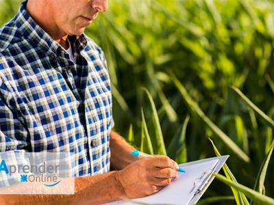 Curso en Administración Rural